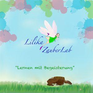 Logo der Dankstelle Lilika ZauberLab