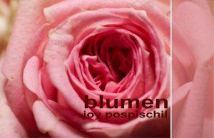 Logo der Dankstelle Blumen Joy Pospischil