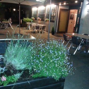 Bild der Dankstelle Restaurant  Knossos