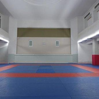 Bild der Dankstelle Heidelberger Judoclub e.V.