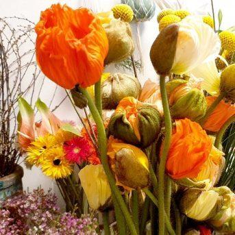 Bild der Dankstelle Blumen Joy Pospischil